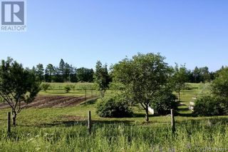 Photo 7: 799 Back Greenfield Road in Summerfield: Agriculture for sale : MLS®# NB060241