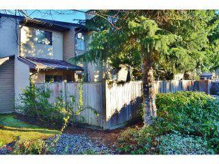 Photo 19: # 25 20653 THORNE AV in Maple Ridge: Southwest Maple Ridge Condo for sale : MLS®# V1096697