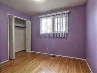 Photo 13: 5139 Marshall Road NE in Calgary: Marlborough Detached for sale : MLS®# A1105698