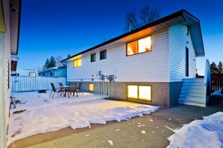 Photo 18: 4728 Rundlehorn Drive NE in Calgary: Rundle Detached for sale : MLS®# A1051594