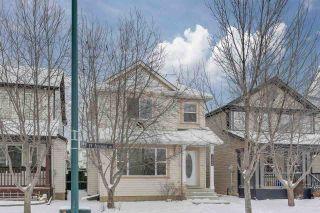 Photo 31: 12040 19 Avenue in Edmonton: Zone 55 House for sale : MLS®# E4228766