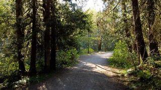 "Photo 12: 12905 246 Street in Maple Ridge: Websters Corners Land for sale in ""Allco Park"" : MLS®# R2576635"