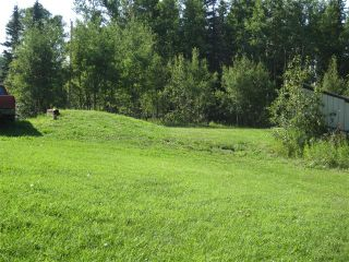 Photo 39: 54021 Range Road 161 in Yellowhead County: Edson Country Residential for sale : MLS®# 34765