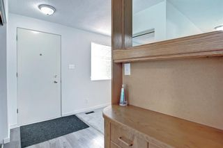 Photo 12: 1124 Northmount Drive NW in Calgary: Brentwood Detached for sale : MLS®# A1144480