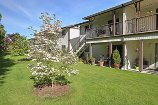 "Photo 3: 81 32718 GARIBALDI Drive in Abbotsford: Abbotsford West Condo for sale in ""FIRCREST"" : MLS®# R2454549"