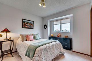 Photo 37: 16 Douglas Woods View SE in Calgary: Douglasdale/Glen Detached for sale : MLS®# A1041640