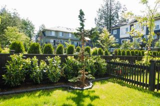 """Photo 19: 72 7686 209 Street in Langley: Willoughby Heights Townhouse for sale in """"KEATON"""" : MLS®# R2270555"""