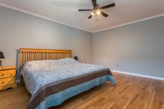 Photo 22: 12025 206B Street in Maple Ridge: Northwest Maple Ridge House for sale : MLS®# R2464942