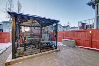 Photo 37: 8418 SADDLERIDGE Drive NE in Calgary: Saddle Ridge Detached for sale : MLS®# C4287136