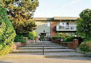 Photo 2: 226 2600 E 49TH Avenue in Vancouver: Killarney VE Condo for sale (Vancouver East)  : MLS®# R2614218