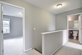 Photo 24: 159 Copperstone Grove SE in Calgary: Copperfield Detached for sale : MLS®# A1138819