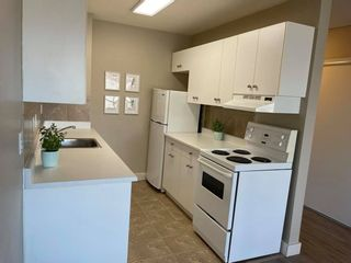 Photo 4: 409 10135 120 Street NW in Edmonton: Zone 12 Condo for sale : MLS®# E4233867