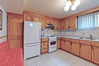 Photo 26: 60 Iangrove Terrace in Toronto: L'Amoreaux House (Bungalow) for sale (Toronto E05)  : MLS®# E5383921