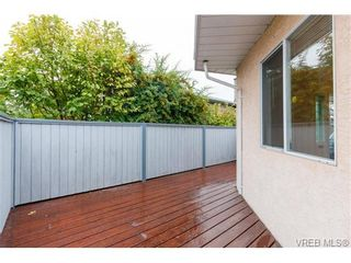 Photo 15: 515 Broadway St in VICTORIA: SW Glanford House for sale (Saanich West)  : MLS®# 712844