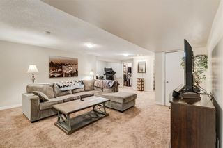 Photo 26: 10219 MAPLE BROOK Place SE in Calgary: Maple Ridge Detached for sale : MLS®# C4304932