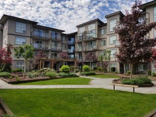 """Photo 9: 216 30525 CARDINAL Avenue in Abbotsford: Abbotsford West Condo for sale in """"Tamarind Westside"""" : MLS®# R2572145"""