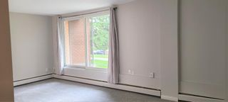 Photo 9: 101 3506 44 Street SW in Calgary: Glenbrook Apartment for sale : MLS®# A1116241