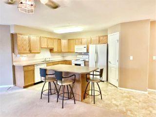 Photo 5: 213 8942 156 Street in Edmonton: Zone 22 Condo for sale : MLS®# E4235755