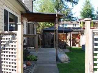 Photo 9: 21201 WICKLUND Avenue in Maple Ridge: Northwest Maple Ridge House for sale : MLS®# R2562891