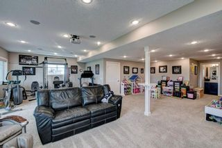 Photo 25: 661 Muirfield Crescent: Lyalta Detached for sale : MLS®# A1061463