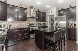 Photo 11: 740 HARDY Point in Edmonton: Zone 58 House for sale : MLS®# E4245565