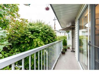 """Photo 18: 214 2780 WARE Street in Abbotsford: Central Abbotsford Condo for sale in """"CHELSEA HOUSE"""" : MLS®# R2459911"""