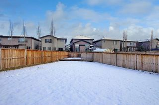 Photo 45: 32 Walden Bay SE in Calgary: Walden Detached for sale : MLS®# A1055250