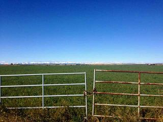 Photo 4: 48: Rural Foothills County Land for sale : MLS®# C4235807