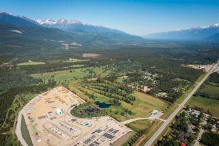 Photo 3: 1655 S 5 Highway in Valemount: Valemount - Town Industrial for sale (Robson Valley (Zone 81))  : MLS®# C8040501