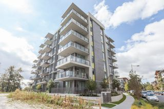 Photo 16: 506 3168 RIVERWALK AVENUE in Vancouver: Champlain Heights Condo for sale (Vancouver East)  : MLS®# R2106705