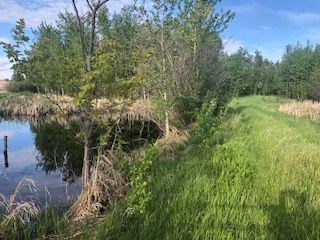Photo 4: Range Road 233 TWP 520 NW: Rural Strathcona County Rural Land/Vacant Lot for sale : MLS®# E4179287