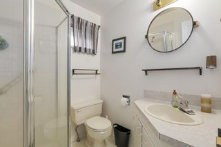 Photo 11: 1493 FREDERICK Road in North Vancouver: Lynn Valley House for sale : MLS®# R2259256