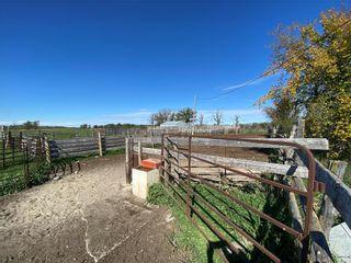 Photo 10: 17015 Otto Church Road in Lundar: R19 Farm for sale : MLS®# 202123384