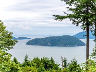 Photo 17: 115 MOUNTAIN Drive: Lions Bay House for sale (West Vancouver)  : MLS®# R2561948