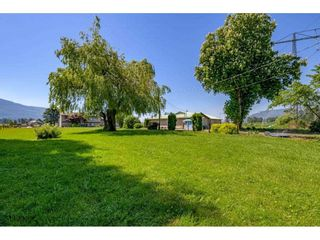 Photo 3: 41706 KEITH WILSON Road in Chilliwack: Greendale Chilliwack House for sale (Sardis)  : MLS®# R2581052