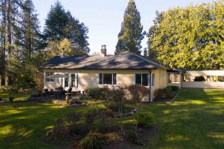 Photo 15: 2958 208 Street in Langley: Brookswood Langley House for sale : MLS®# R2349501