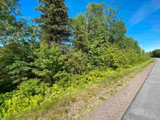 Photo 4: River John Road in Sundridge: 108-Rural Pictou County Vacant Land for sale (Northern Region)  : MLS®# 202115166