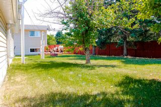 Photo 42: 220 HOMESTEAD Crescent in Edmonton: Zone 35 House for sale : MLS®# E4252303