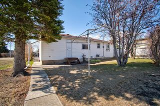 Photo 7: 7724 46 Avenue NW in Calgary: Bowness Detached for sale : MLS®# A1098212