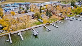 Photo 42: 119 East Chestermere Drive: Chestermere Semi Detached for sale : MLS®# A1082809