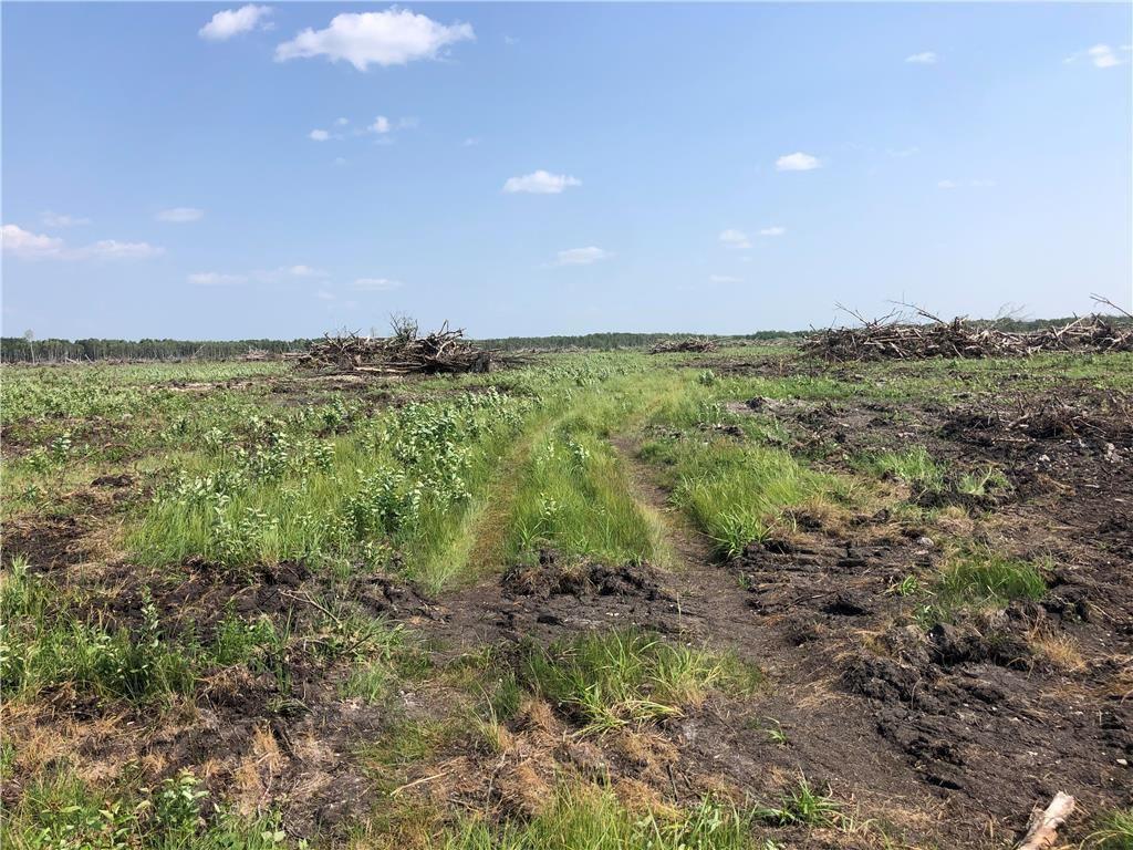 Main Photo:  in Grunthal: R17 Farm for sale : MLS®# 202118621
