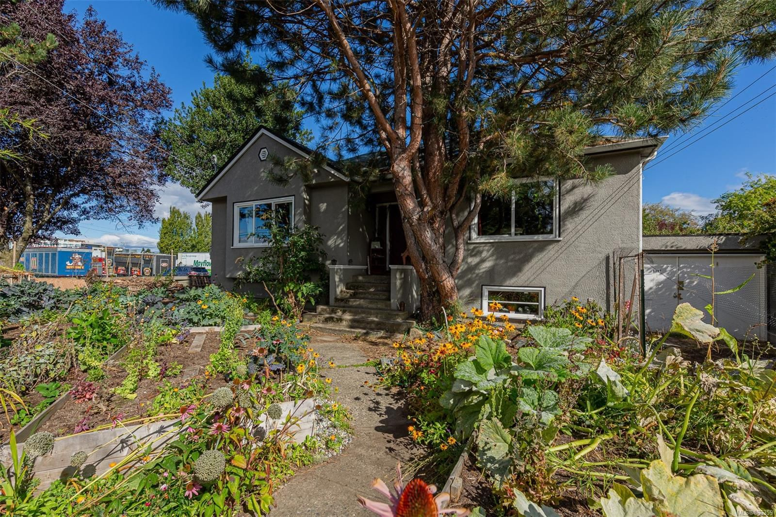 Main Photo: 1126 Lyall St in Esquimalt: Es Saxe Point House for sale : MLS®# 886359