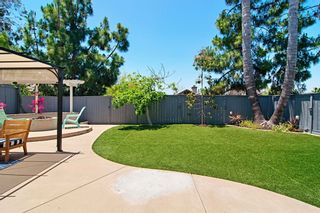 Photo 20: House for sale : 4 bedrooms : 2416 Badger Lane in Carlsbad