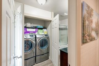 Photo 50: 4026 Locarno Lane in : SE Arbutus House for sale (Saanich East)  : MLS®# 876730