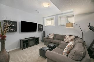 Photo 26: 2 4713 17 Avenue NW in Calgary: Montgomery Row/Townhouse for sale : MLS®# A1135543