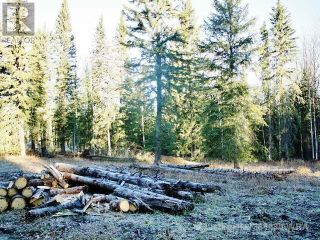 Photo 9: 53018 RANGE RD 175 in Rural Yellowhead County: Vacant Land for sale : MLS®# AW38443