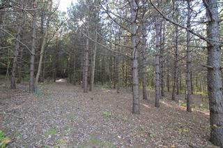 Photo 15: 221 Old Percy Road in Cramahe: Castleton Property for sale : MLS®# X5398941