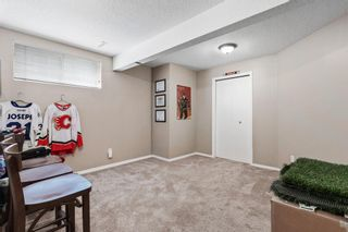 Photo 28: 296 Mt. Brewster Circle SE in Calgary: McKenzie Lake Detached for sale : MLS®# A1118914