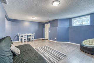 Photo 33: 35 Beddington Gardens NE in Calgary: Beddington Heights Row/Townhouse for sale : MLS®# A1130135
