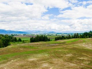 Photo 18: 31050 HARRIS Road in Abbotsford: Bradner House for sale : MLS®# R2588526